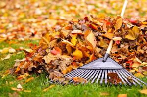 Fall Plumbing Maintenance Tips